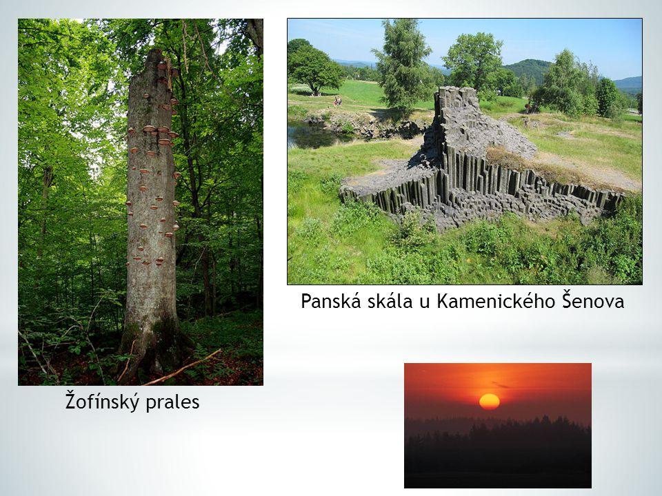  dnes zaujímají na území ČR chráněná území přes 15 % celkové plochy, přičemž přes 2 % jsou plochy přísně chráněné  podle rozlohy a stupně ochrany rozlišujeme několik kategorií chráněných území přírody: 1.