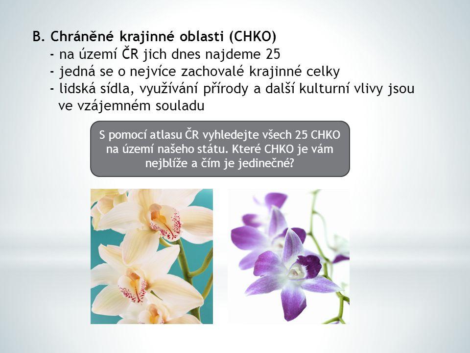 B. Chráněné krajinné oblasti (CHKO) - na území ČR jich dnes najdeme 25 - jedná se o nejvíce zachovalé krajinné celky - lidská sídla, využívání přírody