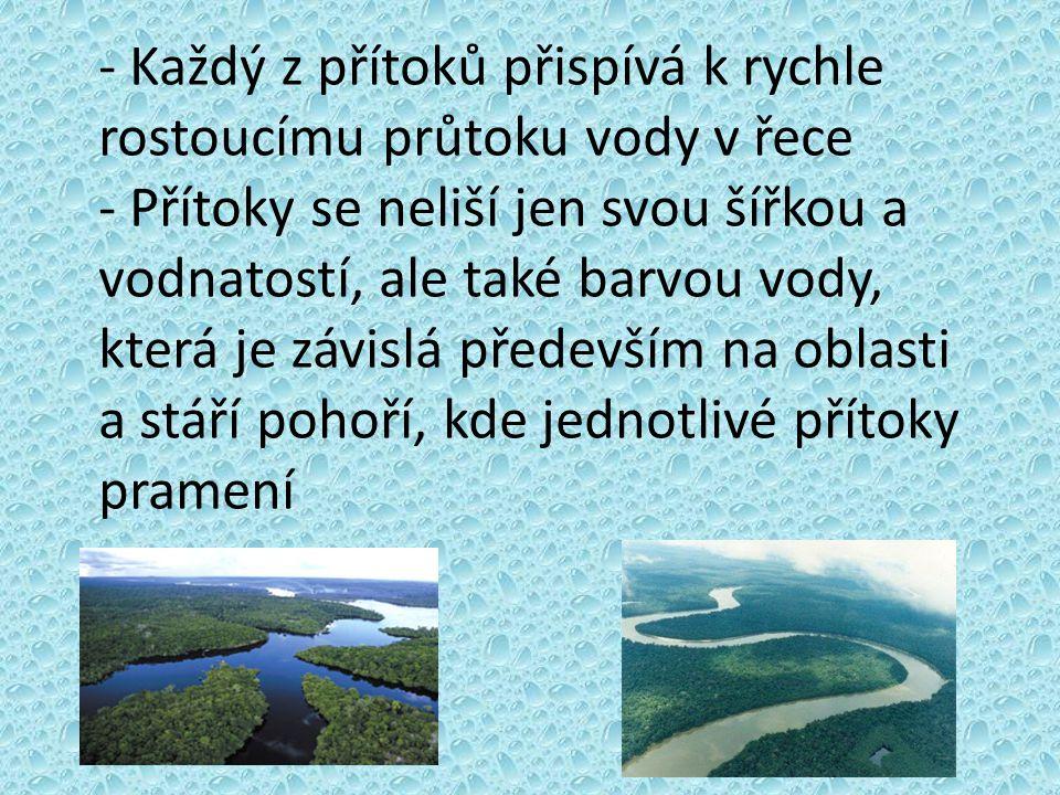 - Každý z přítoků přispívá k rychle rostoucímu průtoku vody v řece - Přítoky se neliší jen svou šířkou a vodnatostí, ale také barvou vody, která je zá