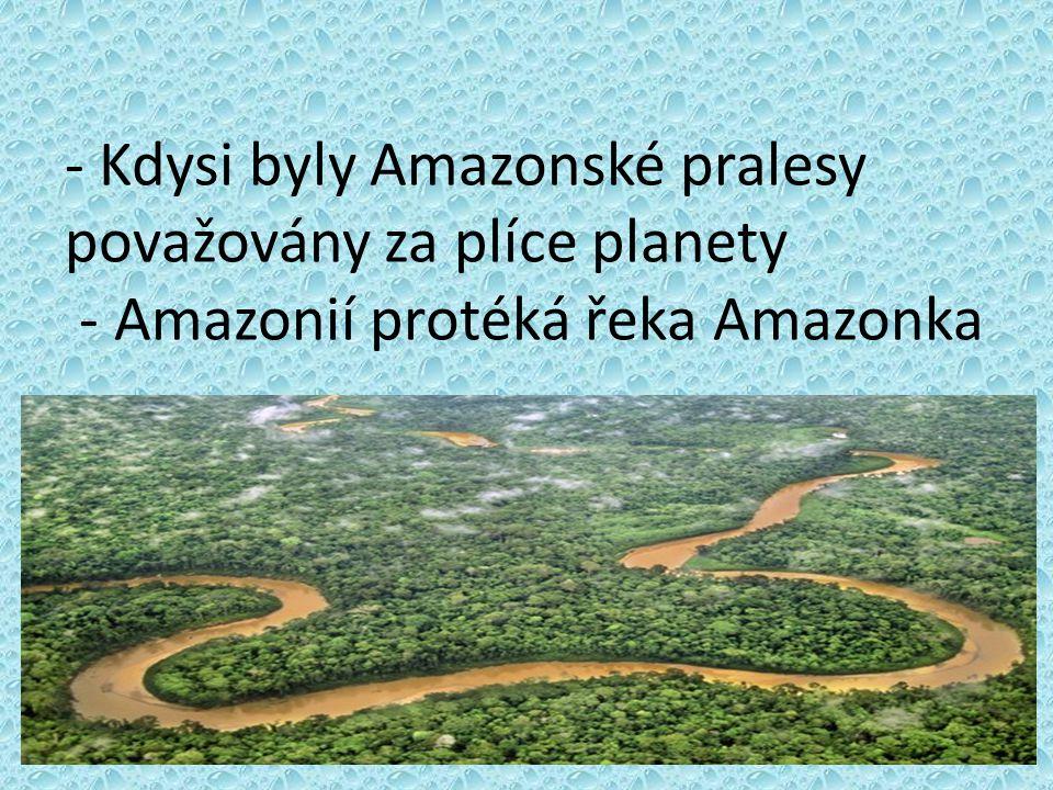 - Kdysi byly Amazonské pralesy považovány za plíce planety - Amazonií protéká řeka Amazonka