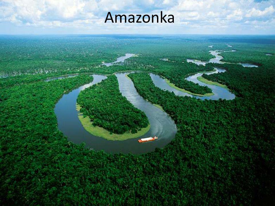 """- Říká se jí """"Tepna života v zelených plících Země - Amazonka je nejvodnatější a nejdelší řekou na Zemi - Nachází se v rovníkové oblasti Jižní Ameriky"""