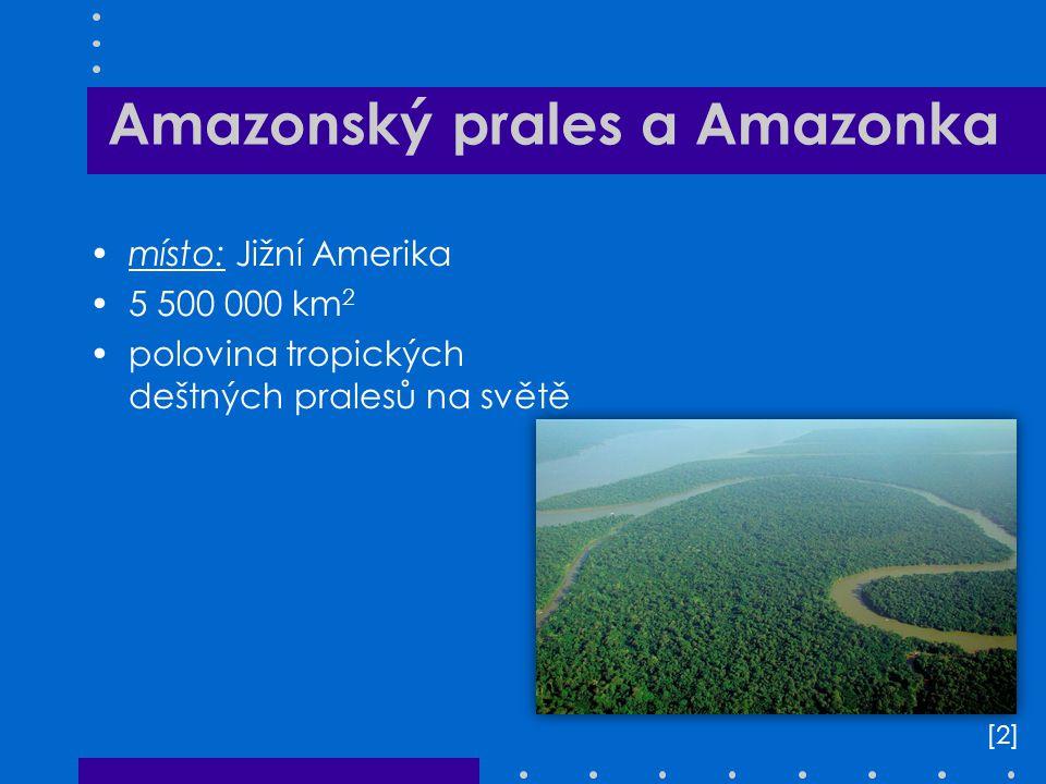 Amazonský prales a Amazonka místo: Jižní Amerika 5 500 000 km 2 polovina tropických deštných pralesů na světě [2][2]