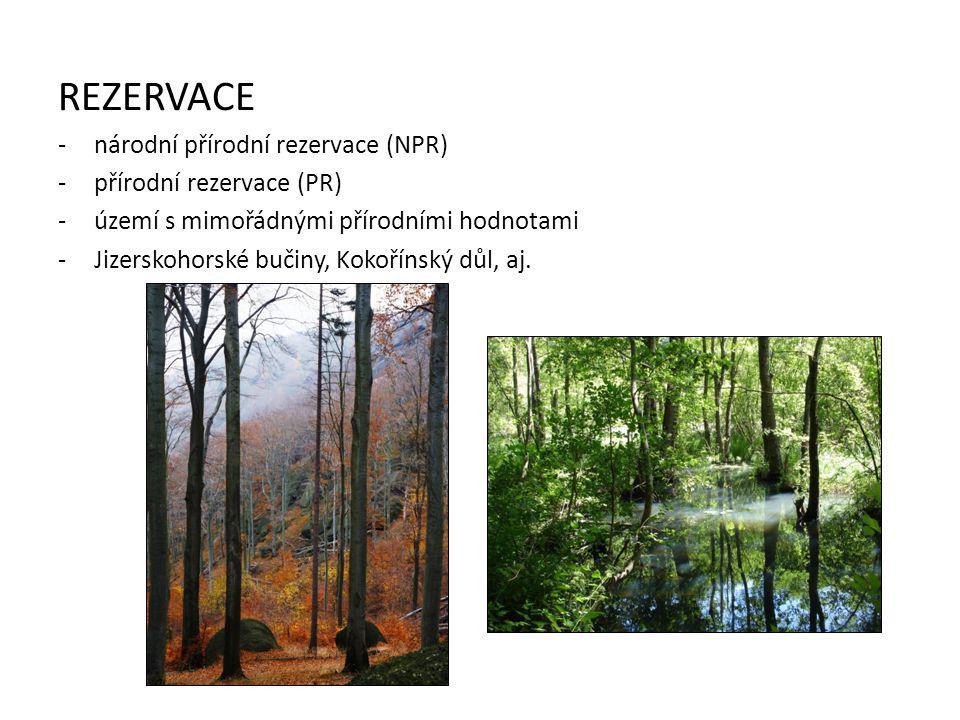 PAMÁTKY -národní přírodní památka (NPP) -přírodní památka (PP) -přírodní úkazy menších rozměrů (např.
