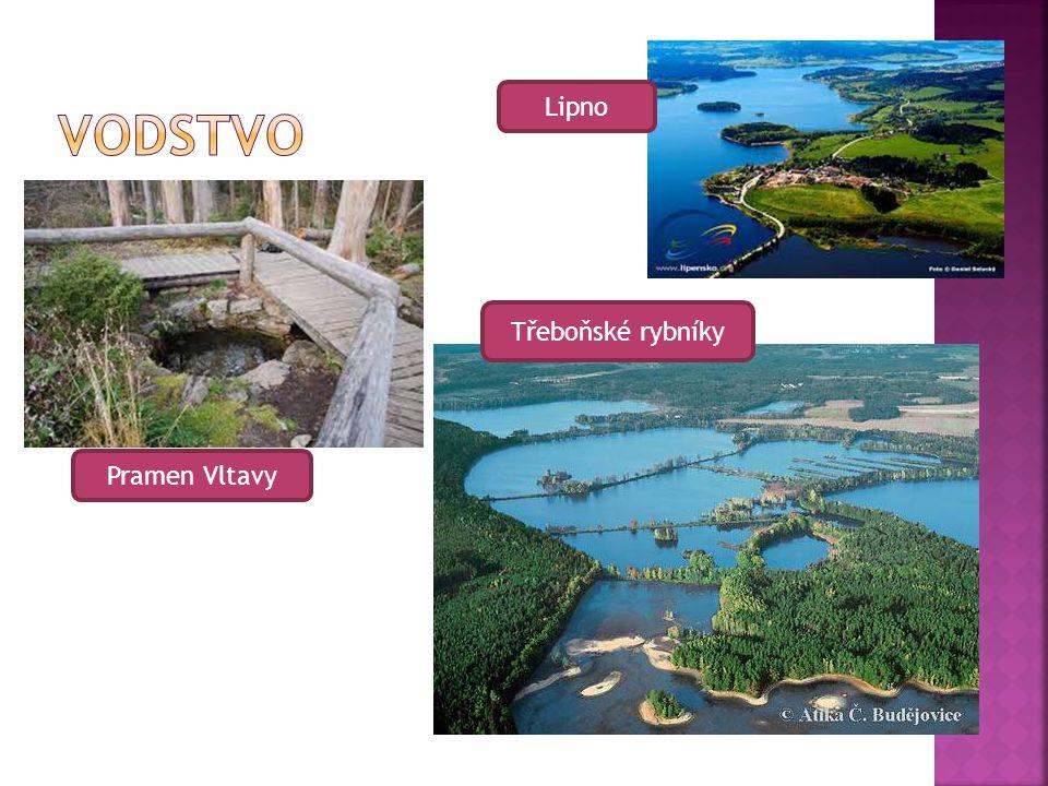 Pramen Vltavy Třeboňské rybníky Lipno