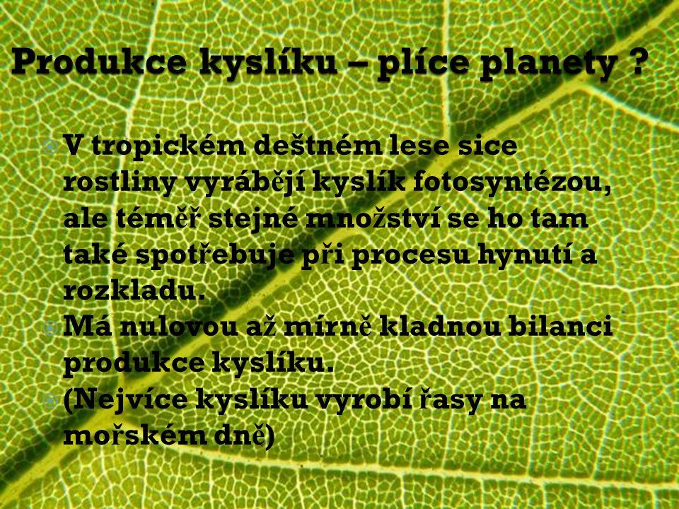  V tropickém deštném lese sice rostliny vyráb ě jí kyslík fotosyntézou, ale tém ěř stejné mno ž ství se ho tam také spot ř ebuje p ř i procesu hynutí a rozkladu.