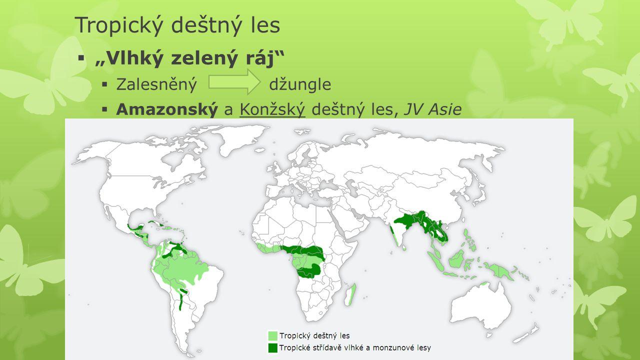 """Tropický deštný les  """"Vlhký zelený ráj""""  Zalesněnýdžungle  Amazonský a Konžský deštný les, JV Asie"""