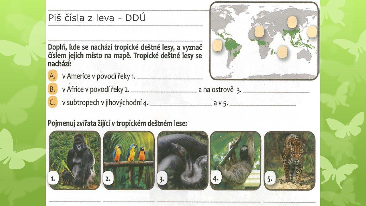 Piš čísla z leva - DDÚ