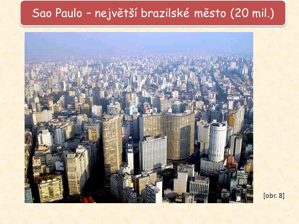 Sao Paulo – největší brazilské město (20 mil.) [obr. 8]
