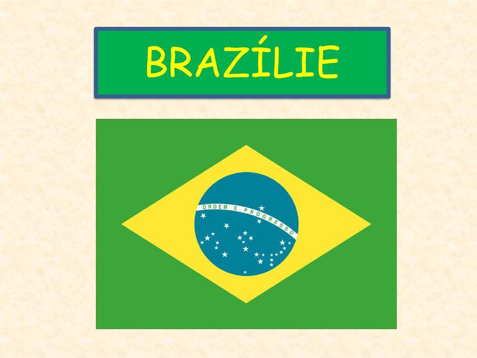 Města Brazílie Brasília Sao Paulo Rio de Janeiro Porto Alegre Manaus
