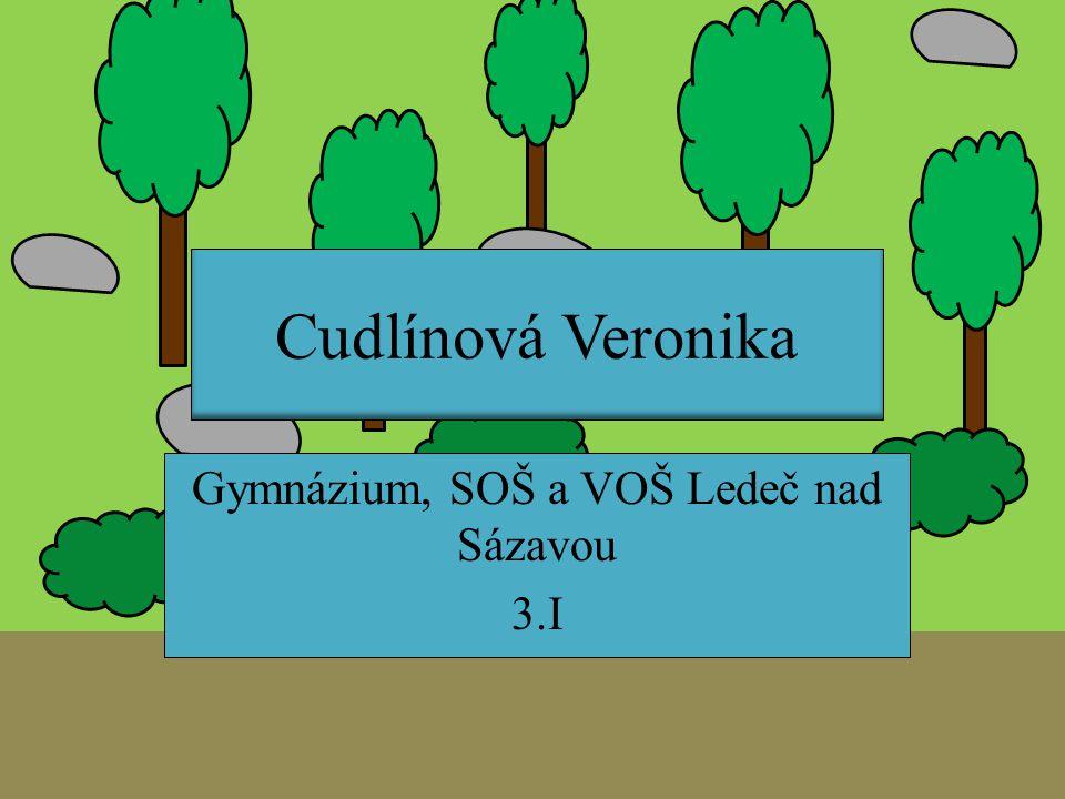 Cudlínová Veronika Gymnázium, SOŠ a VOŠ Ledeč nad Sázavou 3.I