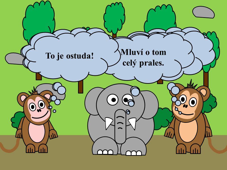 Ahoj Sloníku. Čau Opičáci. Ahoj Sloníku. Co se děje? Co potřebujete? Stala se hrozná věc! Myslíte tu fotku na síti? Jak to víš? Mluví o tom celý prale