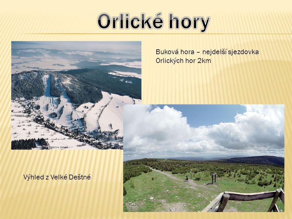Buková hora – nejdelší sjezdovka Orlických hor 2km Výhled z Velké Deštné