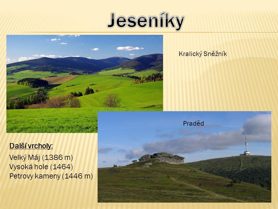 Kralický Sněžník Praděd Další vrcholy: Velký Máj (1386 m) Vysoká hole (1464) Petrovy kameny (1446 m)