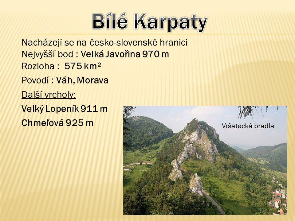 Nacházejí se na česko-slovenské hranici Nejvyšší bod : Velká Javořina 970 m Rozloha : 575 km² Povodí : Váh, Morava Další vrcholy: Velký Lopeník 911 m