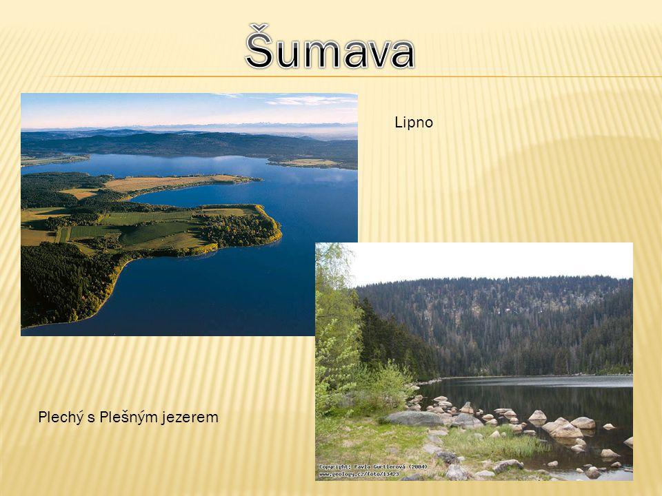 Nacházejí se na severovýchodní Moravě, na jihovýchodě českého Slezska, v jižním Polsku, na severním Slovensku.