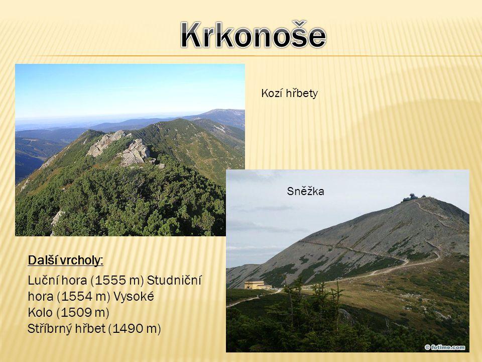Kozí hřbety Sněžka Další vrcholy: Luční hora (1555 m) Studniční hora (1554 m) Vysoké Kolo (1509 m) Stříbrný hřbet (1490 m)