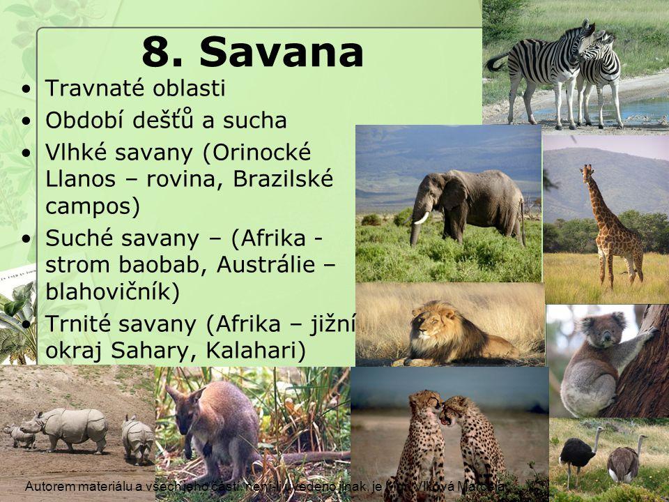 8.Savana Autorem materiálu a všech jeho částí, není-li uvedeno jinak, je Mgr.