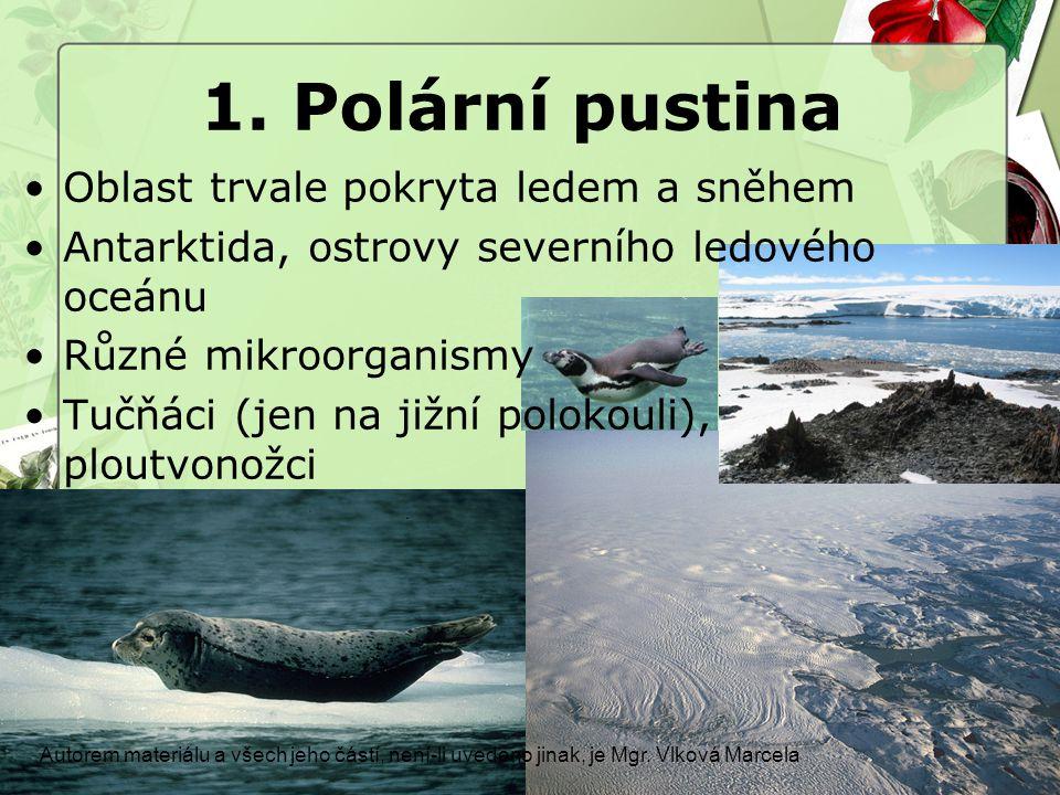 1. Polární pustina Autorem materiálu a všech jeho částí, není-li uvedeno jinak, je Mgr. Vlková Marcela Oblast trvale pokryta ledem a sněhem Antarktida