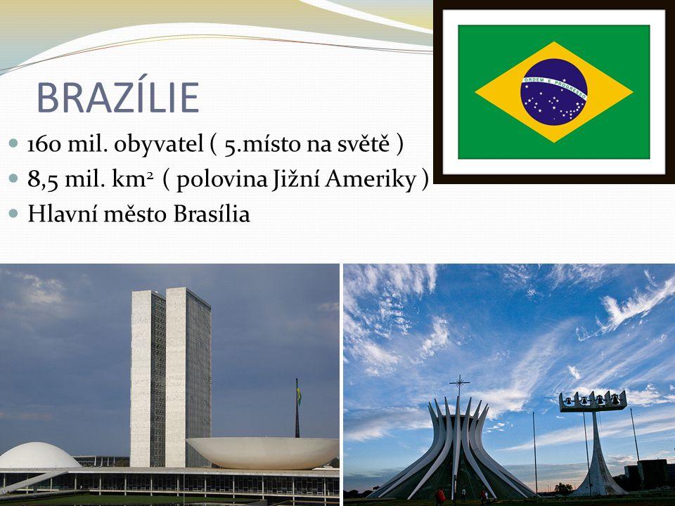 BRAZÍLIE 160 mil. obyvatel ( 5.místo na světě ) 8,5 mil. km 2 ( polovina Jižní Ameriky ) Hlavní město Brasília