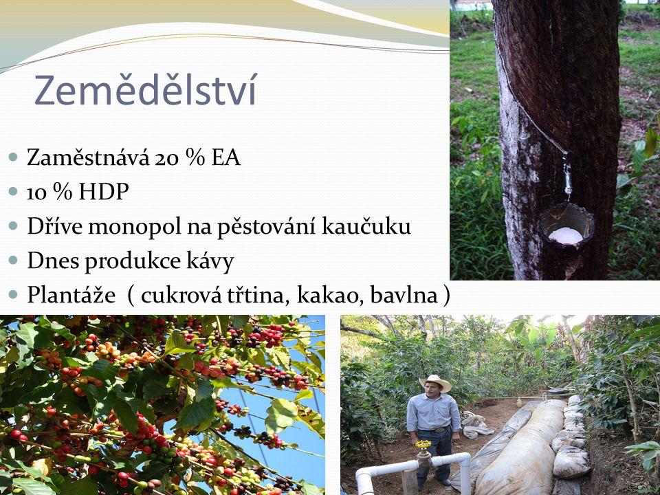 Zemědělství Zaměstnává 20 % EA 10 % HDP Dříve monopol na pěstování kaučuku Dnes produkce kávy Plantáže ( cukrová třtina, kakao, bavlna )