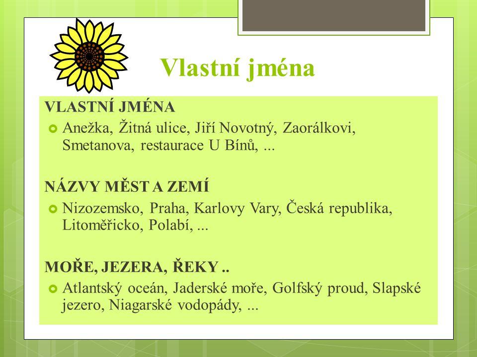 Vlastní jména VLASTNÍ JMÉNA  Anežka, Žitná ulice, Jiří Novotný, Zaorálkovi, Smetanova, restaurace U Bínů,...