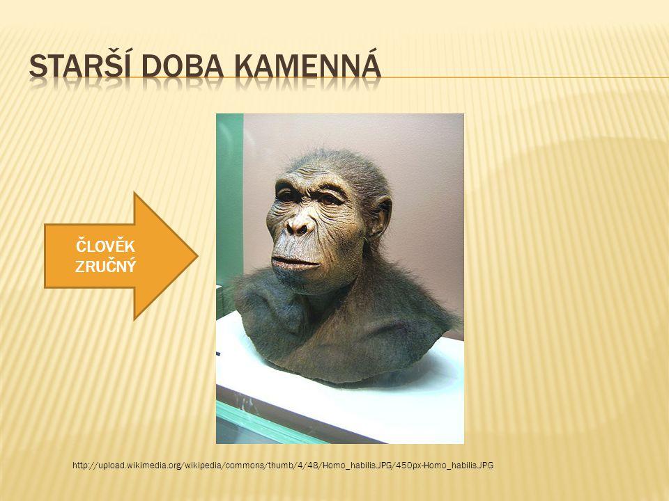 http://upload.wikimedia.org/wikipedia/commons/thumb/4/48/Homo_habilis.JPG/450px-Homo_habilis.JPG ČLOVĚK ZRUČNÝ