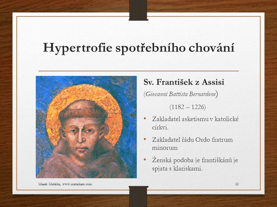Hypertrofie spotřebního chování Sv. František z Assisi (Giovanni Battista Bernardone ) (1182 – 1226) Zakladatel asketismu v katolické církvi. Zakladat