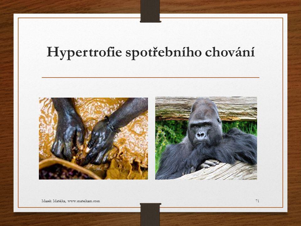 Hypertrofie spotřebního chování Marek Matějka, www.matejkam.com71