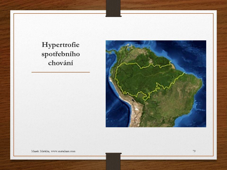 Hypertrofie spotřebního chování Marek Matějka, www.matejkam.com79