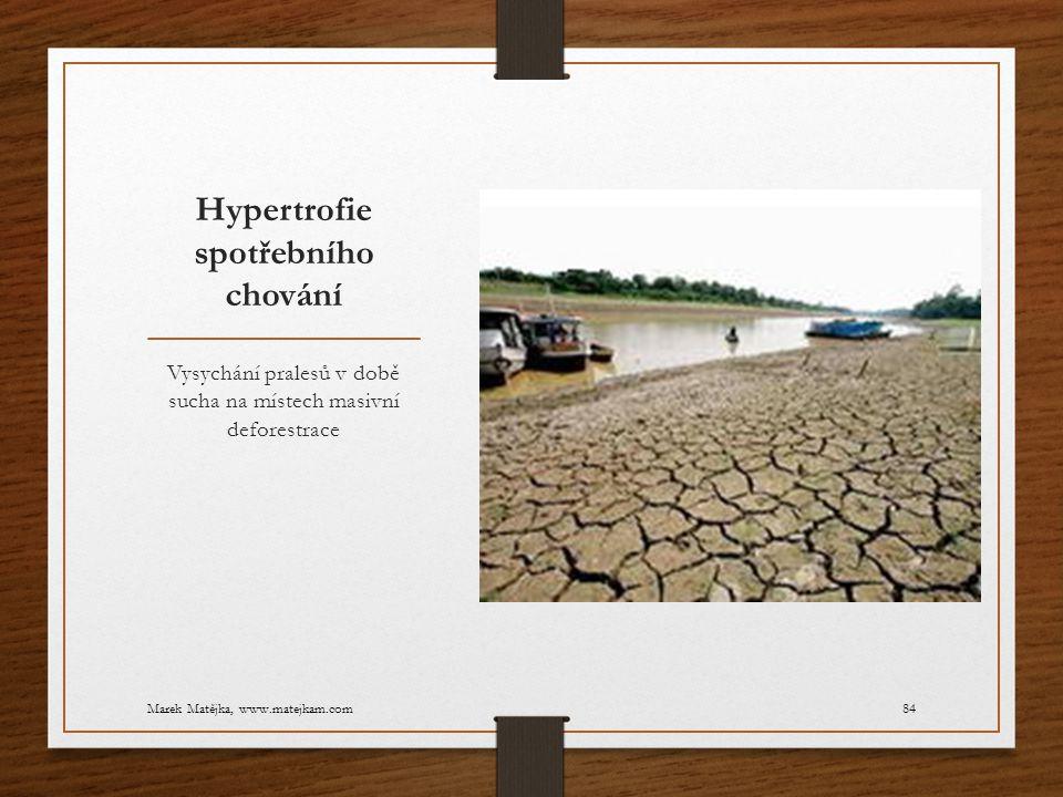 Hypertrofie spotřebního chování Vysychání pralesů v době sucha na místech masivní deforestrace Marek Matějka, www.matejkam.com84