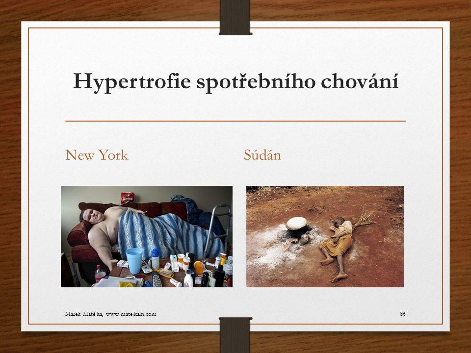 Hypertrofie spotřebního chování New YorkSúdán Marek Matějka, www.matejkam.com86