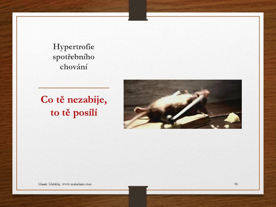 Hypertrofie spotřebního chování Co tě nezabije, to tě posílí Marek Matějka, www.matejkam.com96