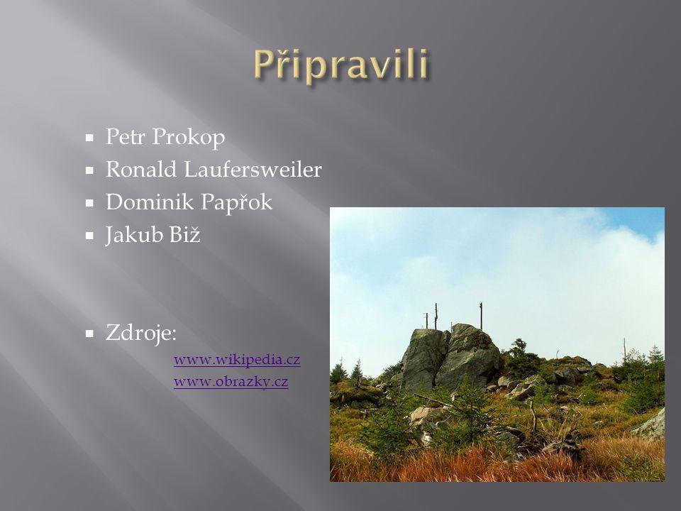  Petr Prokop  Ronald Laufersweiler  Dominik Papřok  Jakub Biž  Zdroje: www.wikipedia.cz www.obrazky.cz