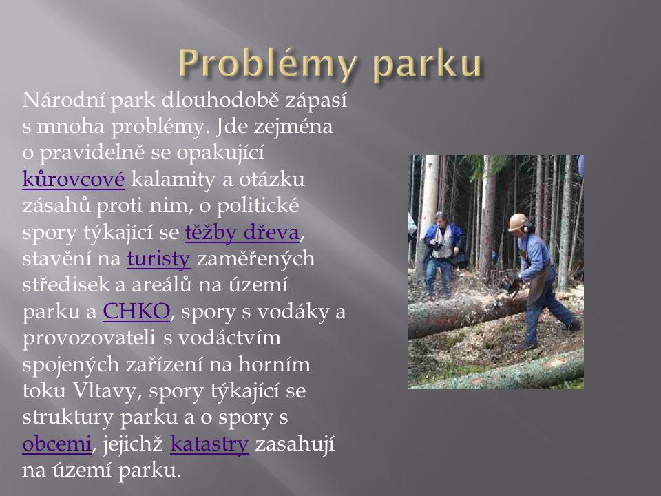 Národní park dlouhodobě zápasí s mnoha problémy. Jde zejména o pravidelně se opakující kůrovcové kalamity a otázku zásahů proti nim, o politické spory