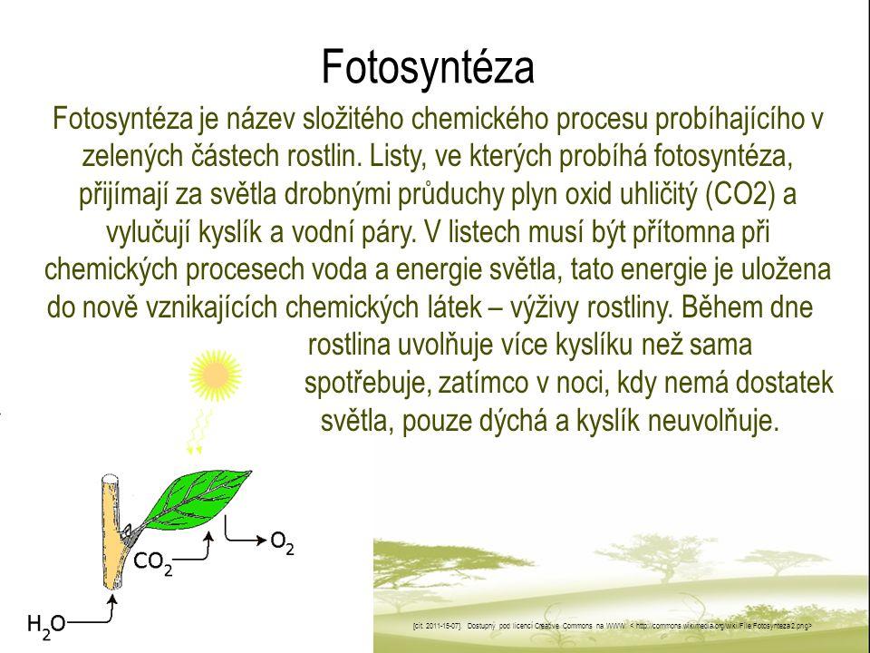 Fotosyntéza Fotosyntéza je název složitého chemického procesu probíhajícího v zelených částech rostlin. Listy, ve kterých probíhá fotosyntéza, přijíma