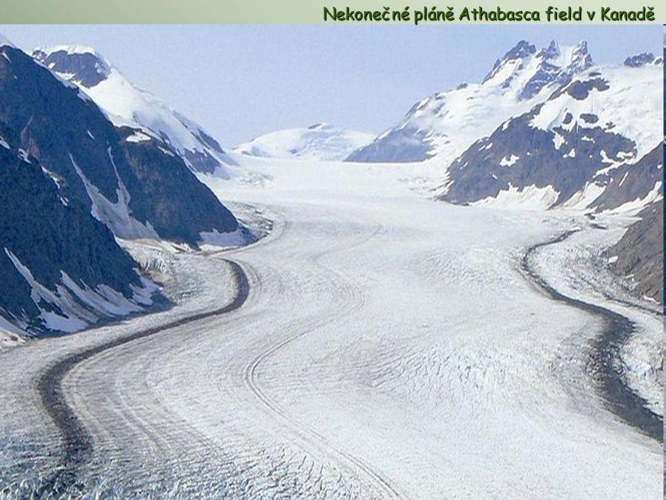 Nekonečné pláně Athabasca field Nekonečné pláně Athabasca field v Kanadě