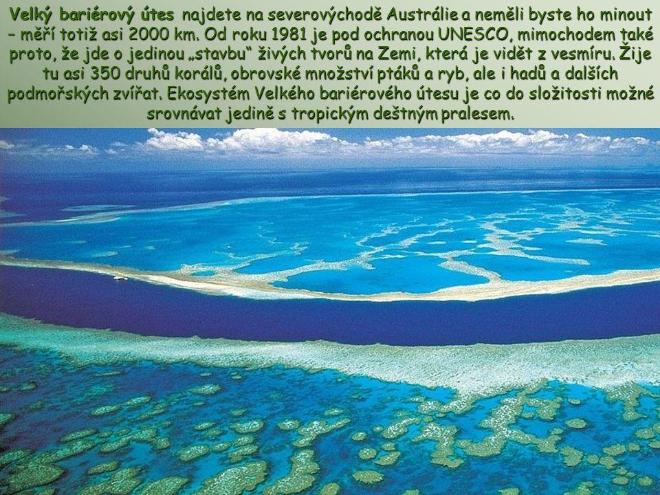 Velký bariérový útes najdete na severovýchodě Austrálie a neměli byste ho minout – měří totiž asi 2000 km.