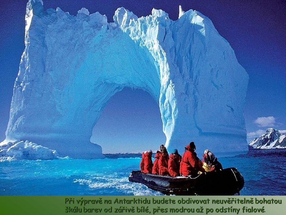 Při výpravě na Antarktidu budete obdivovat neuvěřitelně bohatou škálu barev od zářivě bílé, přes modrou až po odstíny fialové.