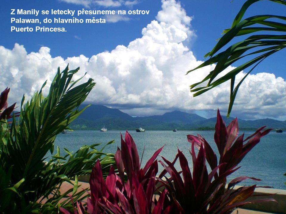 Z Manily se letecky přesuneme na ostrov Palawan, do hlavního města Puerto Princesa.