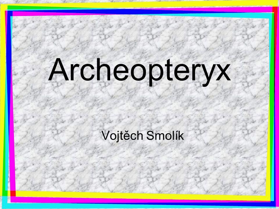 Archeopteryx Vojtěch Smolík