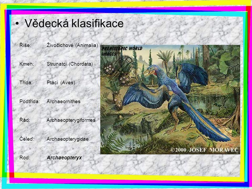 Vědecká klasifikace Říše:Živočichové (Animalia) Kmen:Strunatci (Chordata) Třída:Ptáci (Aves) Podtřída:Archaeornithes Řád:Archaeopterygiformes Čeleď:Ar