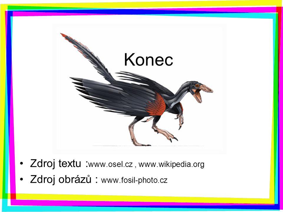 Konec Zdroj textu : www.osel.cz, www.wikipedia.org Zdroj obrázů : www.fosil-photo.cz