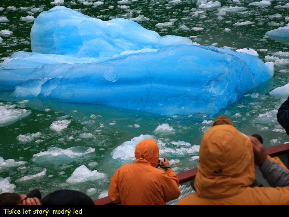 Cesta fjordem k rozpadajícímu se ledovci Sawyer Glacier.