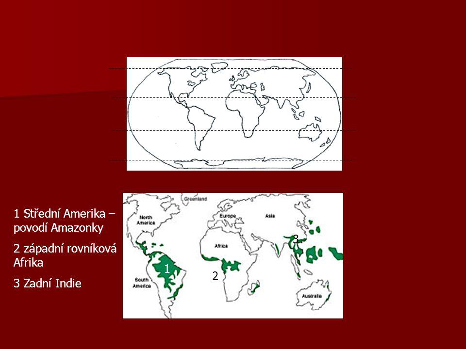 1 Střední Amerika – povodí Amazonky 2 západní rovníková Afrika 3 Zadní Indie 1 2 3