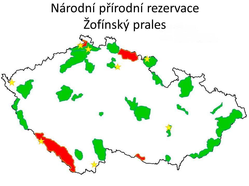 Národní přírodní rezervace Soos