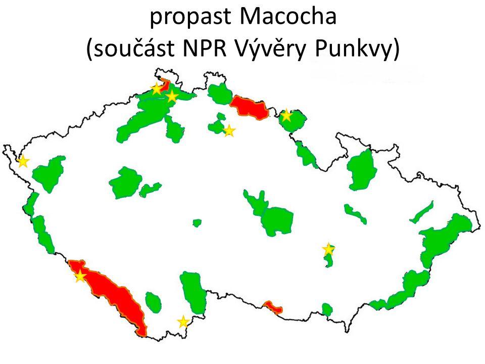 Přírodní rezervace Prachovské skály