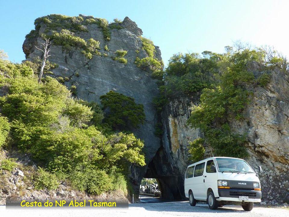 Cesta do NP Abel Tasman
