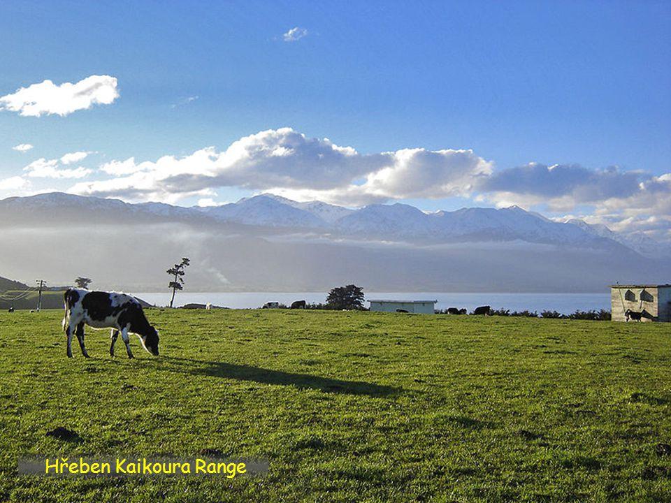 Hřeben Kaikoura Range