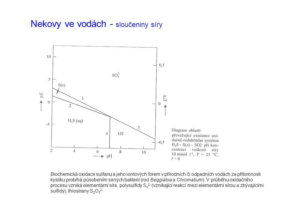 Nekovy ve vodách - sloučeniny síry Chemická oxidace sulfidické síry, resp.
