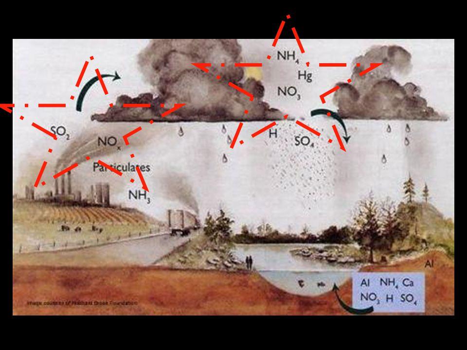 Chemický průmysl (vulkanizace kaučuku) Textilní průmysl (bělení) Potravinářství (dezinfekce – síření) Stupeň tvrdosti síry: 2 – (dá se rýpat nehtem) Další použití…
